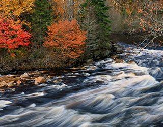 Сонник река с быстрым течением