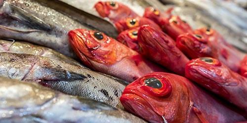 к чему снится торговать рыбой