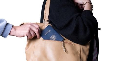 украли сумку во сне