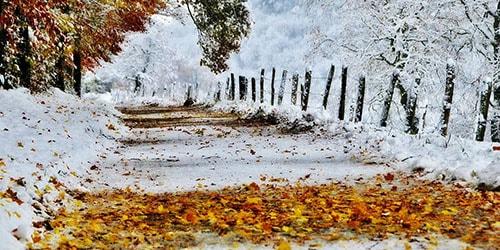 выпал снег осенью