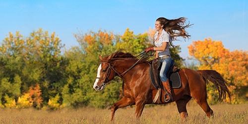 к чему снится ехать верхом на лошади