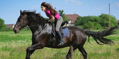 скакать на коне