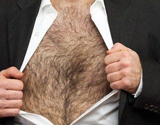 Волосатая грудь