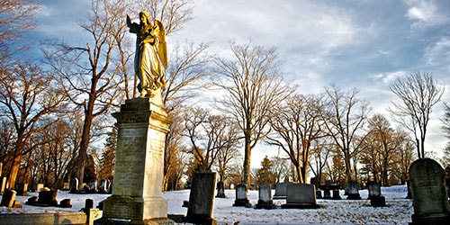 искать могилу на кладбище во сне