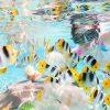 плавать с рыбами в море