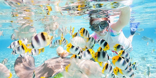 plavat-s-rybami-2.jpg
