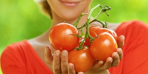 собирать помидоры