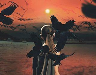 Ворона нападает