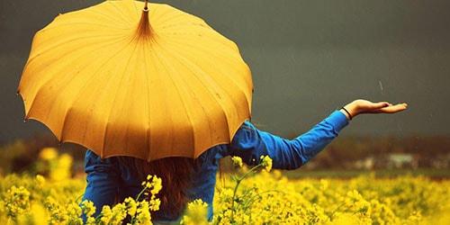 желтый зонт