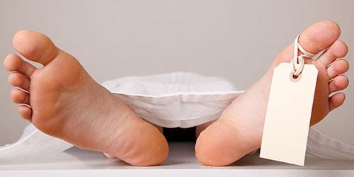 Сонник расчлененное тело - к чему снится расчлененное тело во сне?