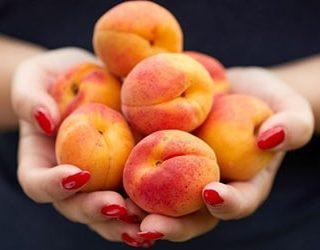 Собирать абрикосы