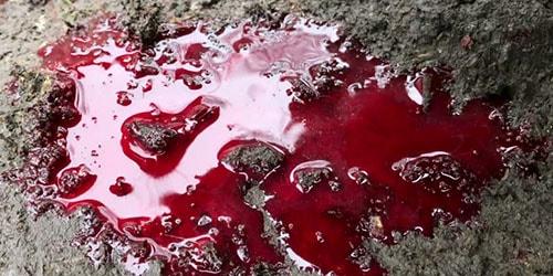 кровь на земле