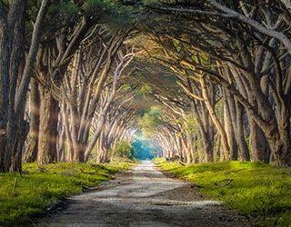 Найти дорогу