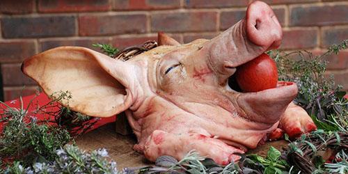 К чему снится отрубленная свиная голова 631