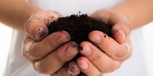 черная почва