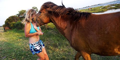 нападение лошади