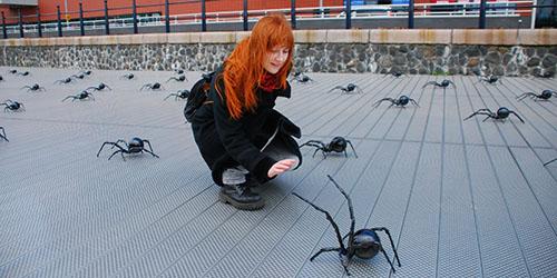приснилось много больших пауков