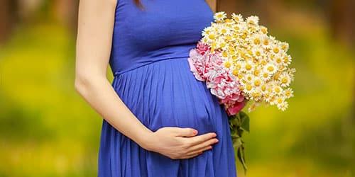 К чему снится беременная родственница?